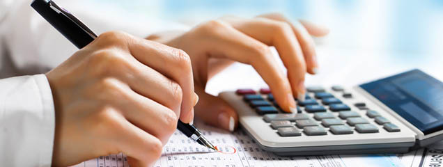Our Liberty Tax employees have professional accounting and tax law skills