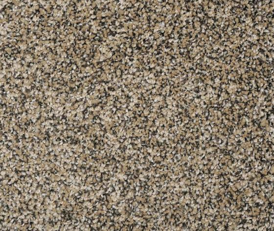 Chipmunk carpet by Lonesome Oak Trading Company.