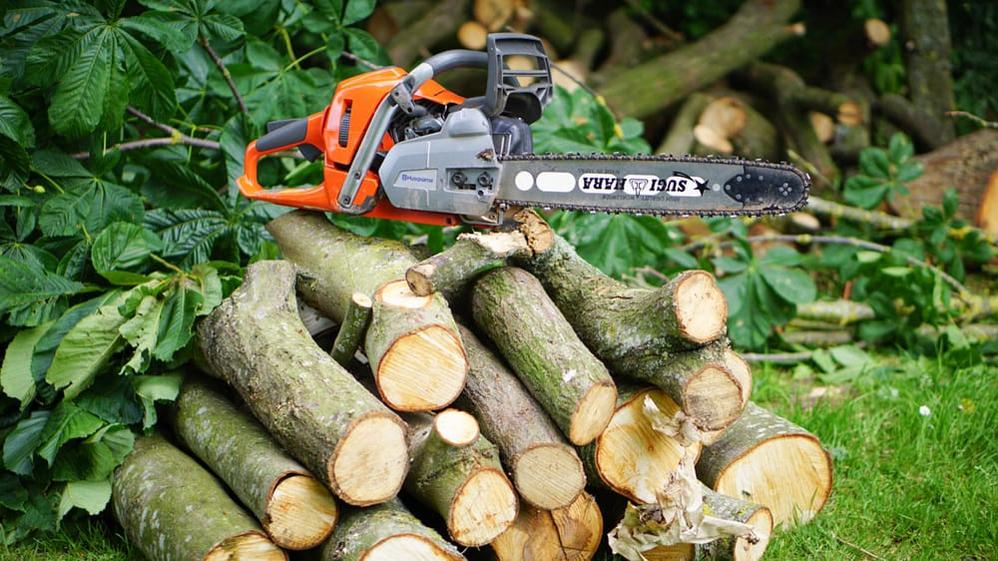 firewood services; AAA Tree Service Northern Virginia