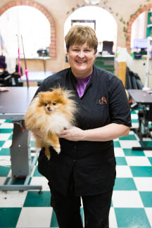 dog grooming service, pet grooming prices, dog nail trimming, dog grooming prices, puppy grooming