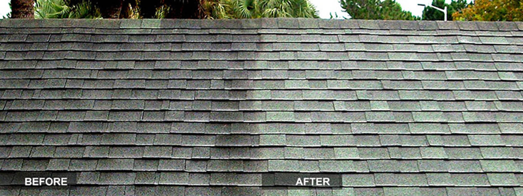 We've hand-mixed the precise formula that best eliminates the specific types of fungus, algae and grime that covers Central Florida roofs and exteriors