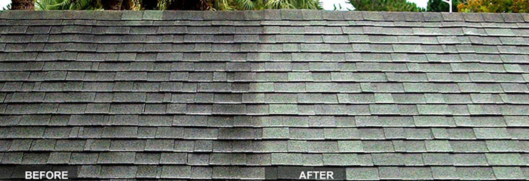 Professional Roof Cleaning Orlando Homeowners, Community Managers and Businesses Trust