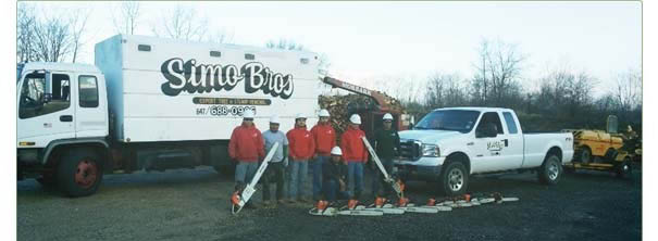 Simo Brothers work trucks; tree trimming in Lake Bluff, IL