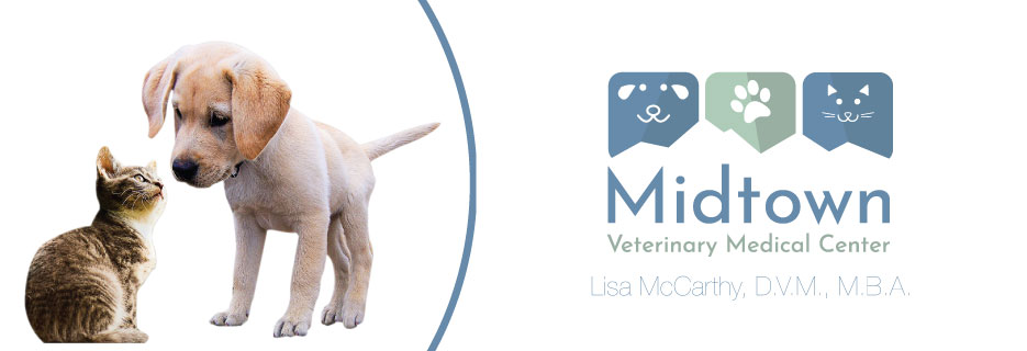 MIDTOWN VETERINARY MEDICAL CENTER