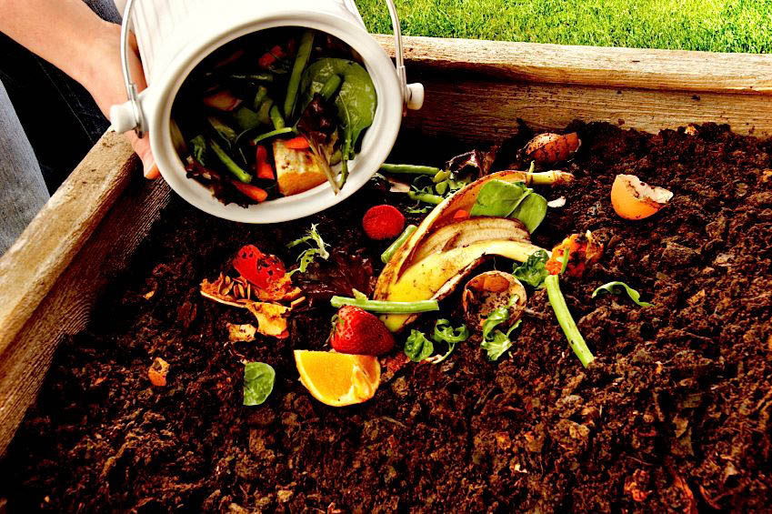 Compost food scraps and yard clippins