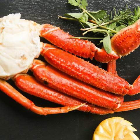 Snow-Crab