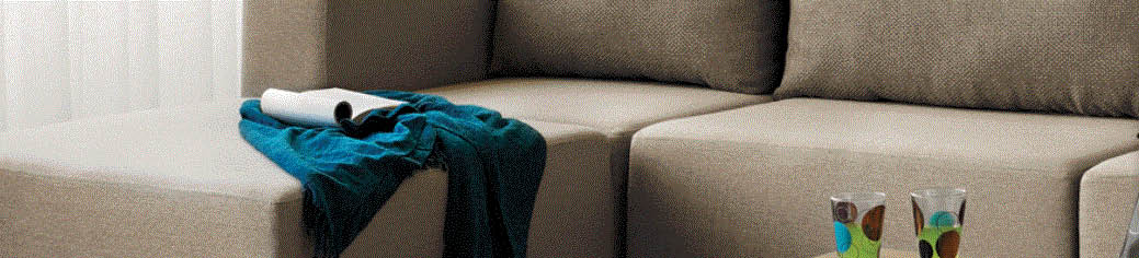 Upholstery Cleaning with Modernistic in Lansing, MI