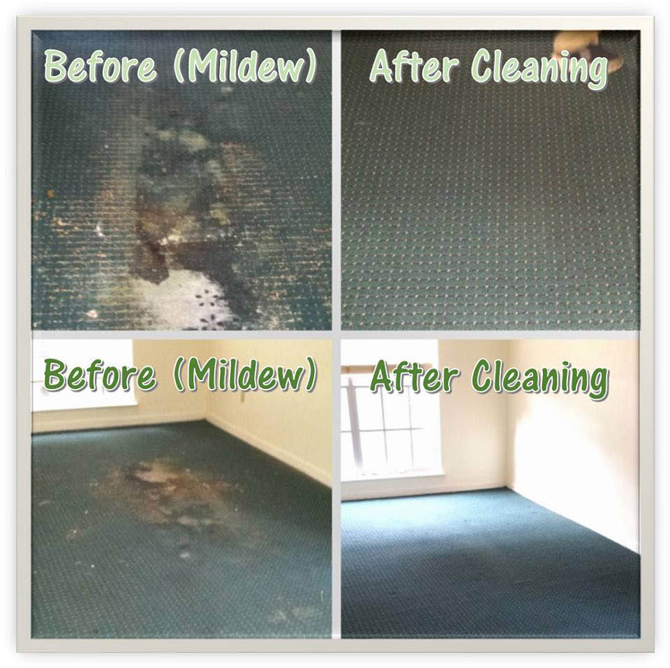 Before and after cleaning mildew discounts near Charleston