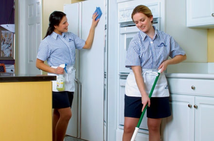 Molly Maid's residential cleaning service, cleaning services, professional, safe