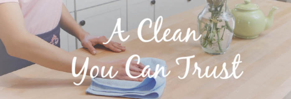 insured professional cleaning maid service