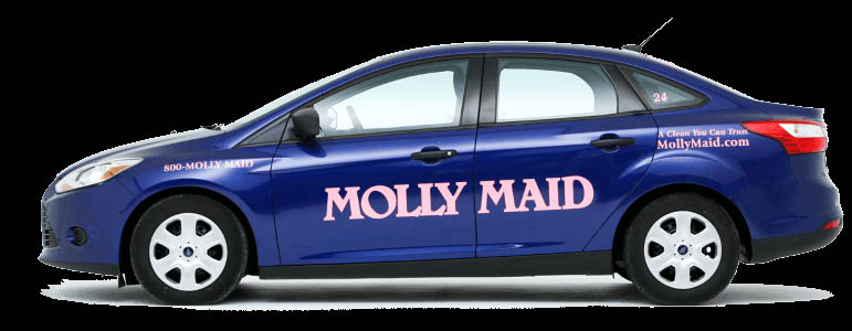 molly maid service cleaning tidying tidy clean