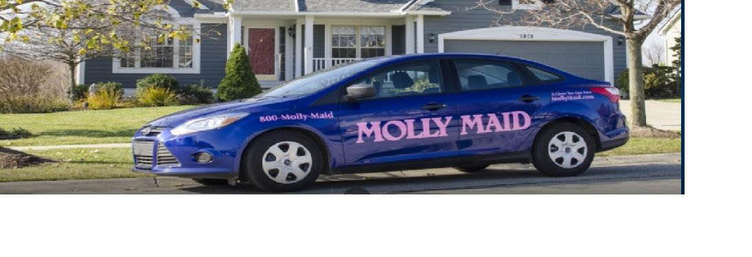 photo of car used by Molly Maid of Livonia, MI