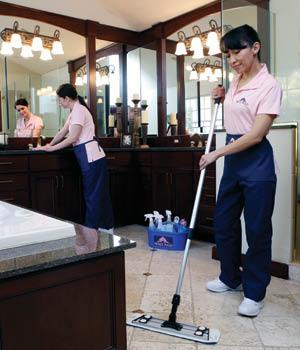Maid service molly maids Rochester ny