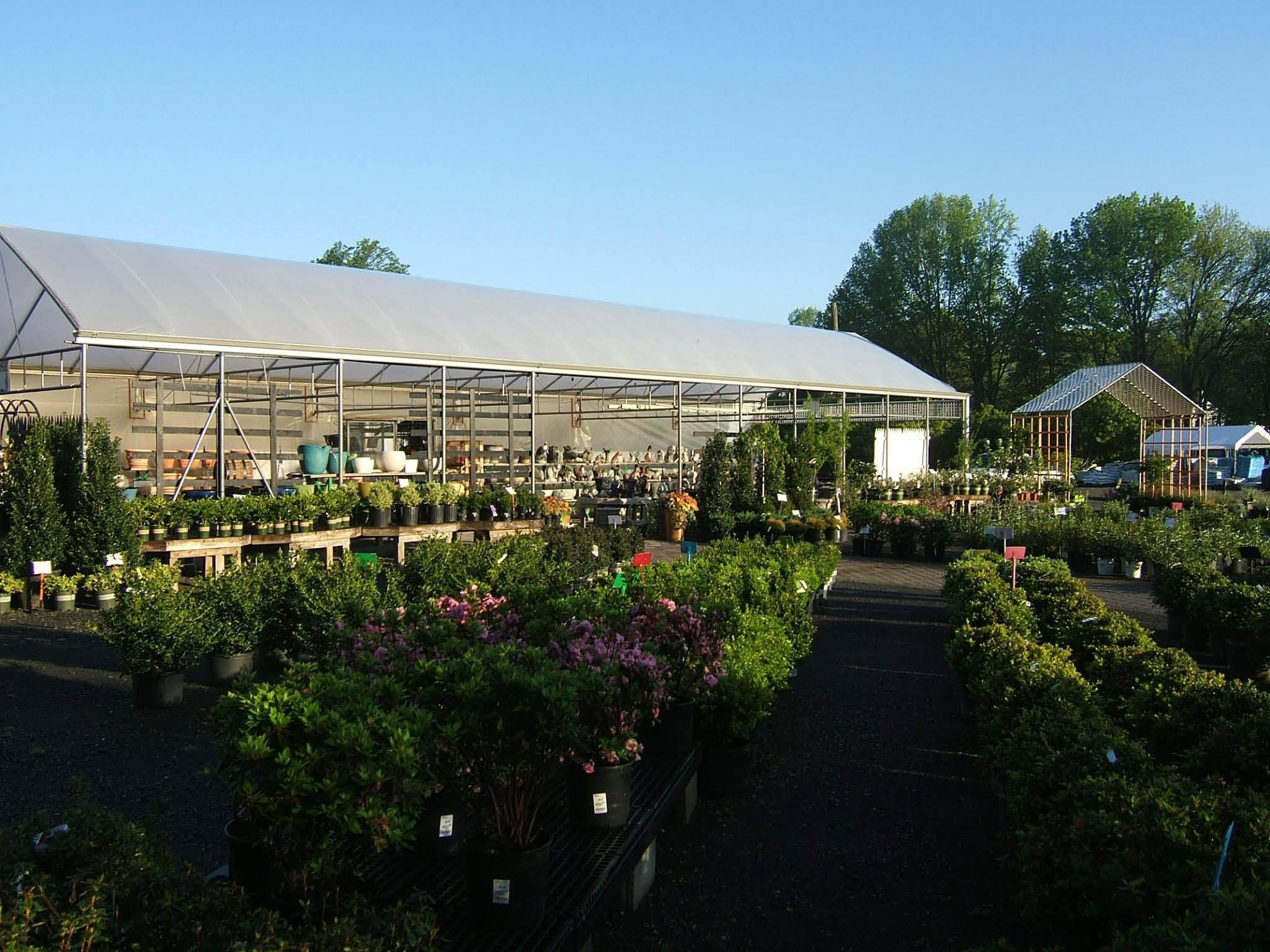tree nurseries