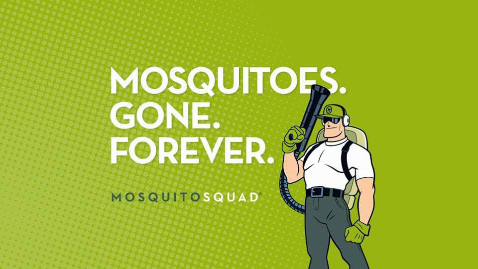 Mosquito Squad of Asheville kills mosquitos and ticks for pest control.
