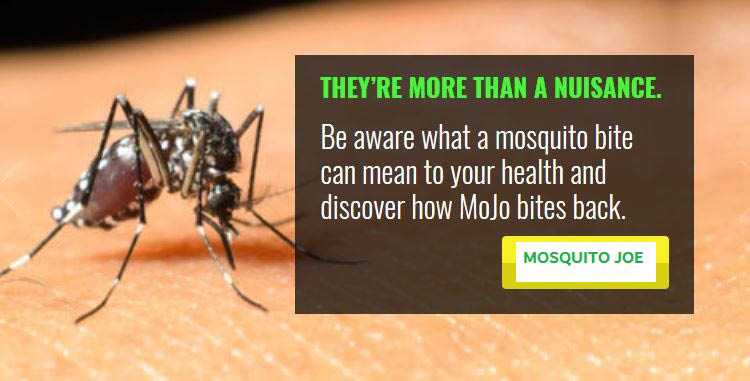 mosquito treatment pest control mosquito joe serving Gainesville, Jefferson, Powder Springs and Cumming area