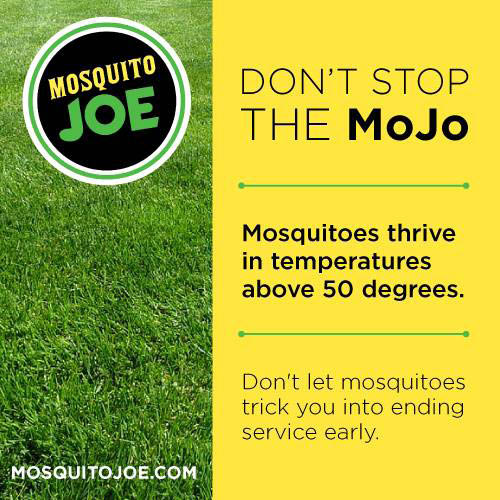 mosquito control with mosquito joe of north atlanta