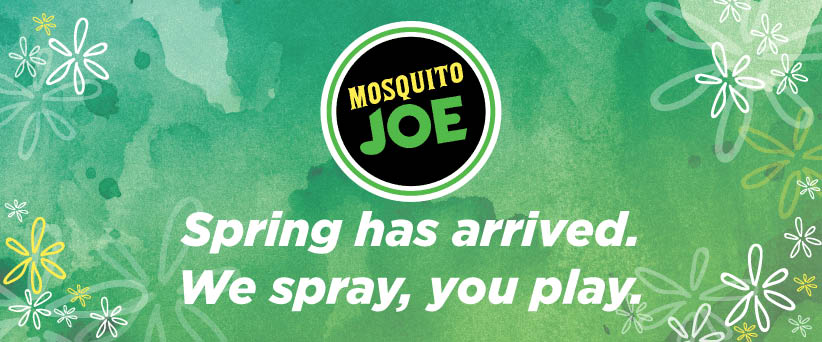 outdoor pest control treatments to residential and commercial in Gainesville, Jefferson, Powder Springs, Cumming