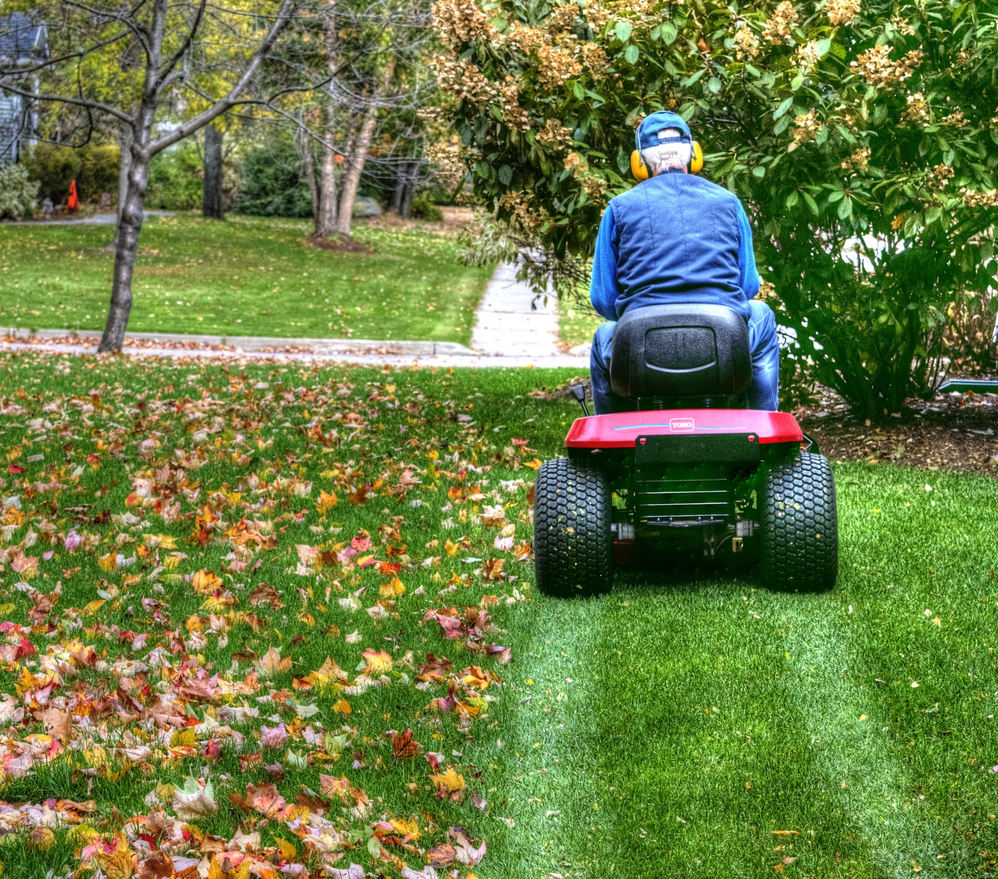 mowing, mulching, commercial, residential, pest control, grub prevention, aeration, seeding; nova and surrounding