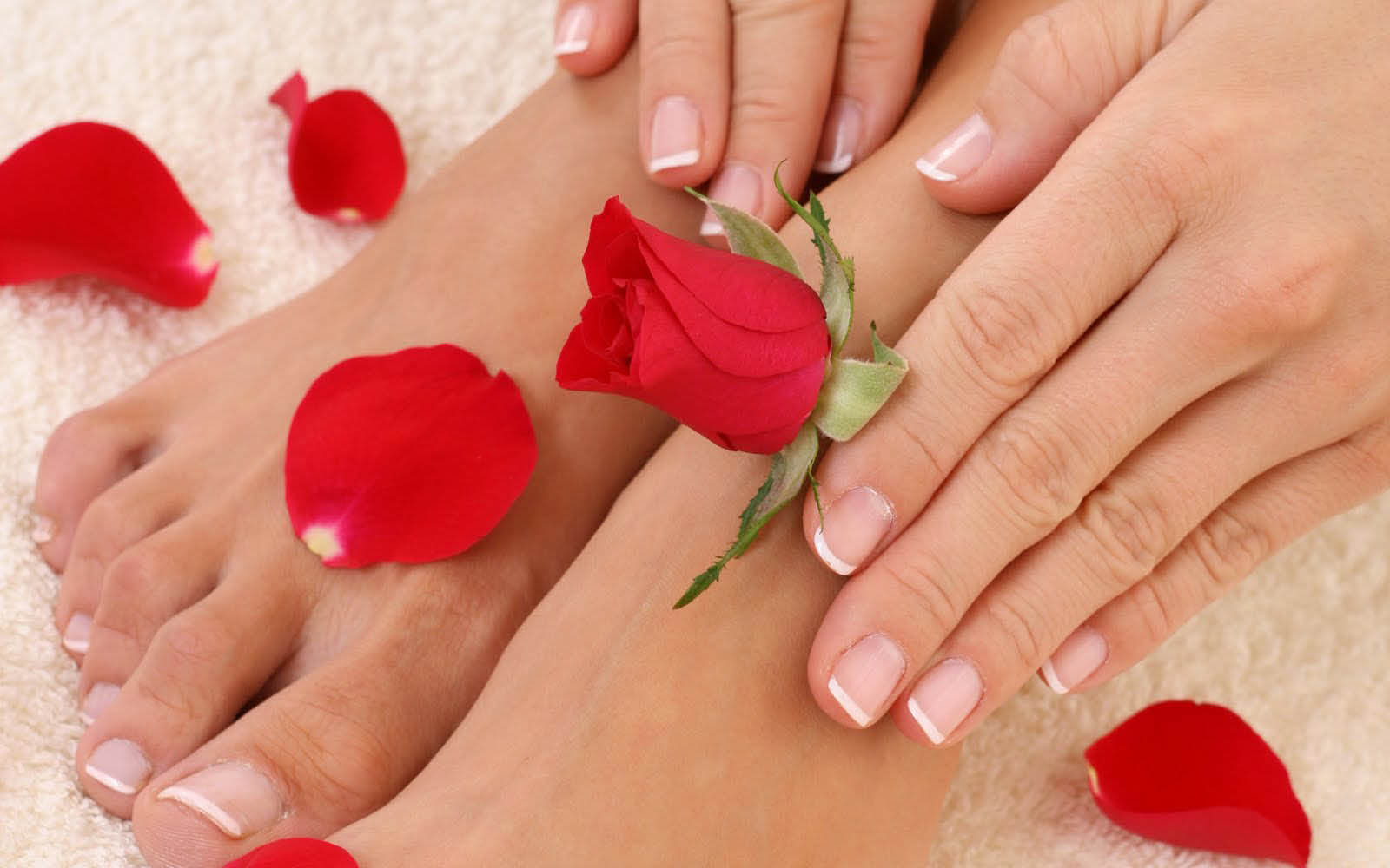 Picture of a natural look Manicure & Pedicure with red rose petals from Nailology Spa in Kansas City