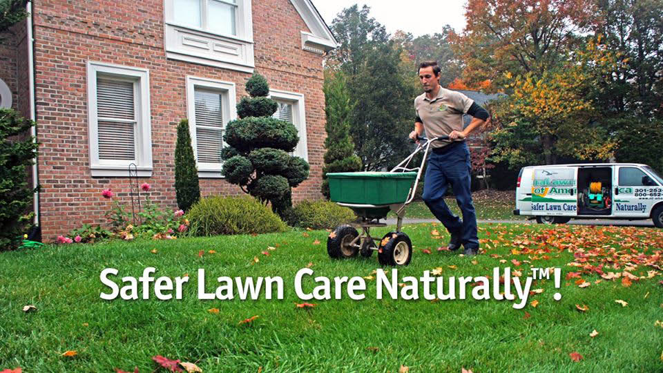 naturalawn of america, lawn care, tick prevention