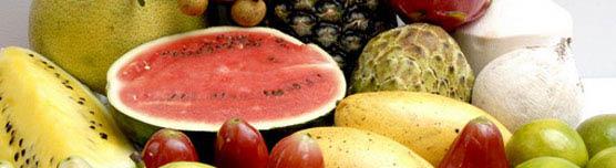 newtown farm market direct from farm produce cincinnati ohio produce