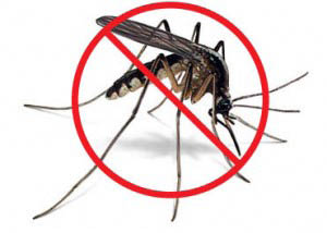 Protect your family from dangerous illnesses such as the Zika Virus, West Nile Virus, and Encephalitis with abatement spray by Mosquito Minus Utah