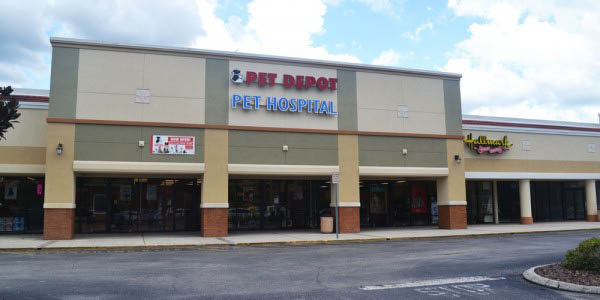NORTH TAMPA PET AND PET DEPOT BUILDING PHOTO dog care cat care pet care veterinary services near me vet near me tampa
