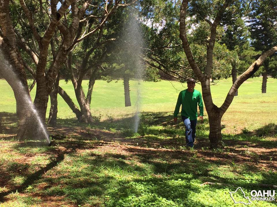 Sprinkler repair near Aiea