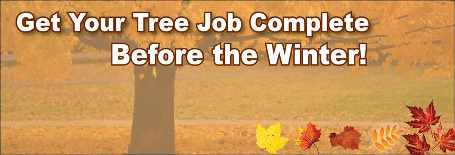 Oakes Tree Service rochester ny valpak banner