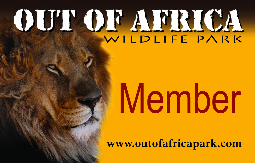 Get a membership for Out of Africa near Phoenix.