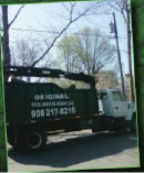Original Tree Service Group