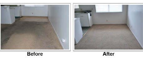 before and after carpet cleaning pics; Oxi Fresh in Wisconsin