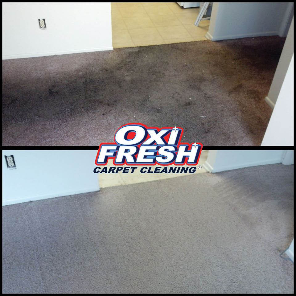 Carpet cleaning before and after images