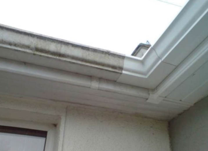 gutter cleaning; house washing
