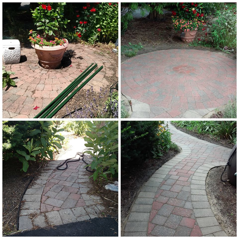 Sealed and cleaned patio and walkway