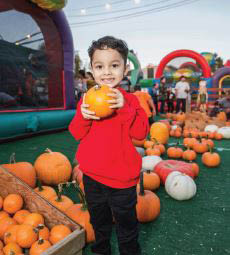 pumpkin patch near me pumpkin patch coupons near me