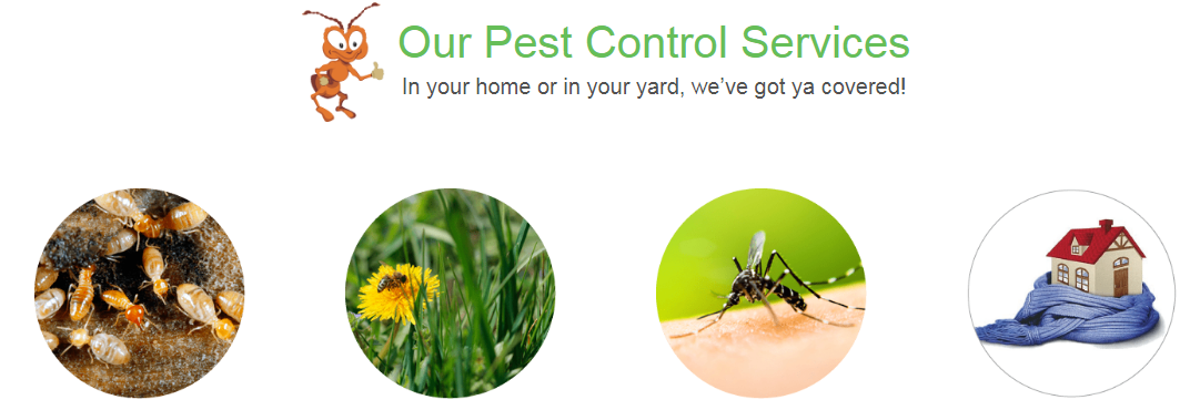 pest control services in maryland