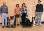Training and obedience classes available at Pet X Supplies & Tack in Howell, MI