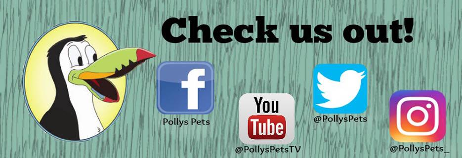 Polly's Pet Shop Banner