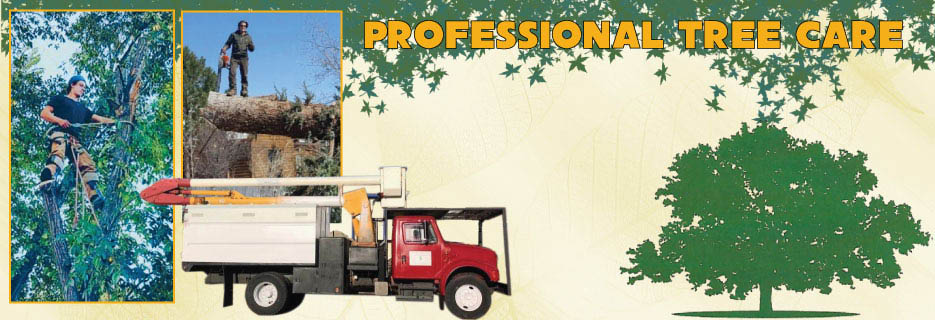 PROFESSIONAL TREE CARE cheyenne