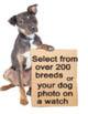 dog watch,bulldog,puppy,german shepard watch, jewelry, animal photos, dog photos,dog breed,chihuahua,great dane,