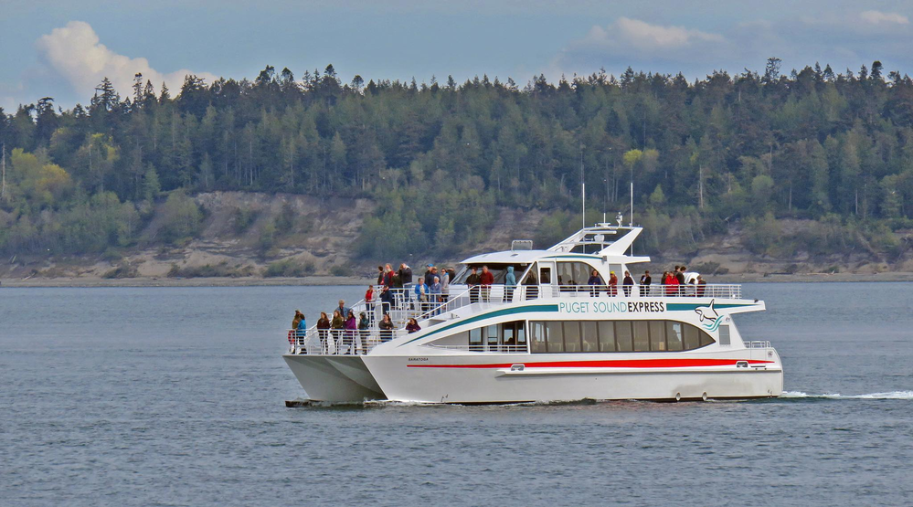 One of our boats headed out for whale watching