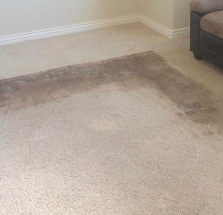 PureChem Carpet Care Coupons, Carpet cleaning coupons,
