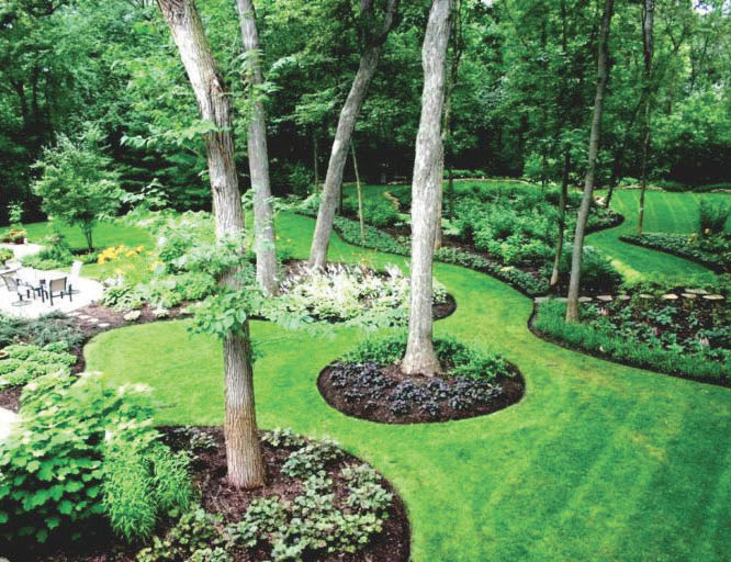landscaping coupons near me landscaping coupons orange county ca landscape coupons near me