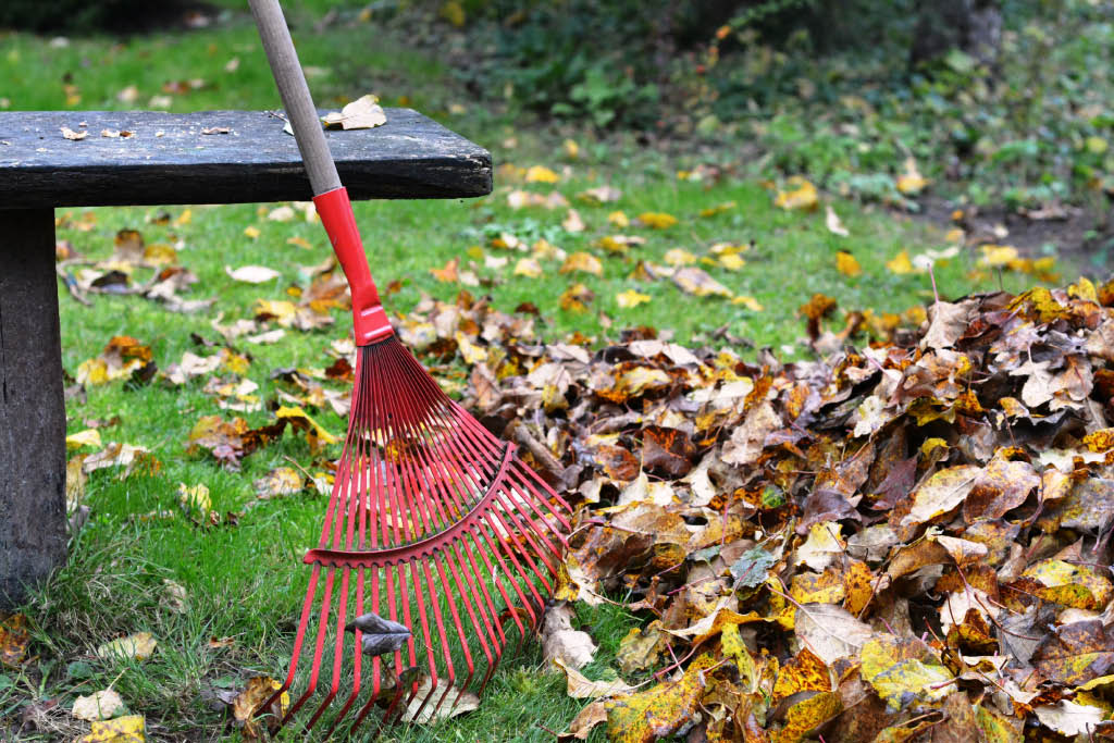 Cleaning, Residential, Commercial, BiWeekly, Weekly, Monthly, Garage, Basement, Lawn Service, Snow Removal, Sanitize, Floors, Vacuum, Dust, Mop