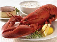 Fresh Red Lobster Meat and Clam Chowder