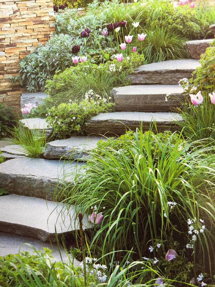 Residential landscape design and plant care in Fairfield County, CT