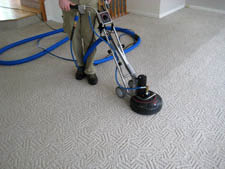 Rotary and wand for cleaner carpets!