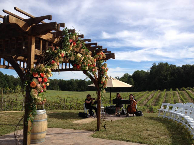 running hare vineyard prince frederick maryland wine catering events weddings craft beer